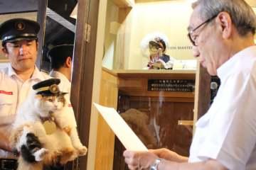 Stasiun Kucing Kishi Di Kinokawa Prefektur Wakayama