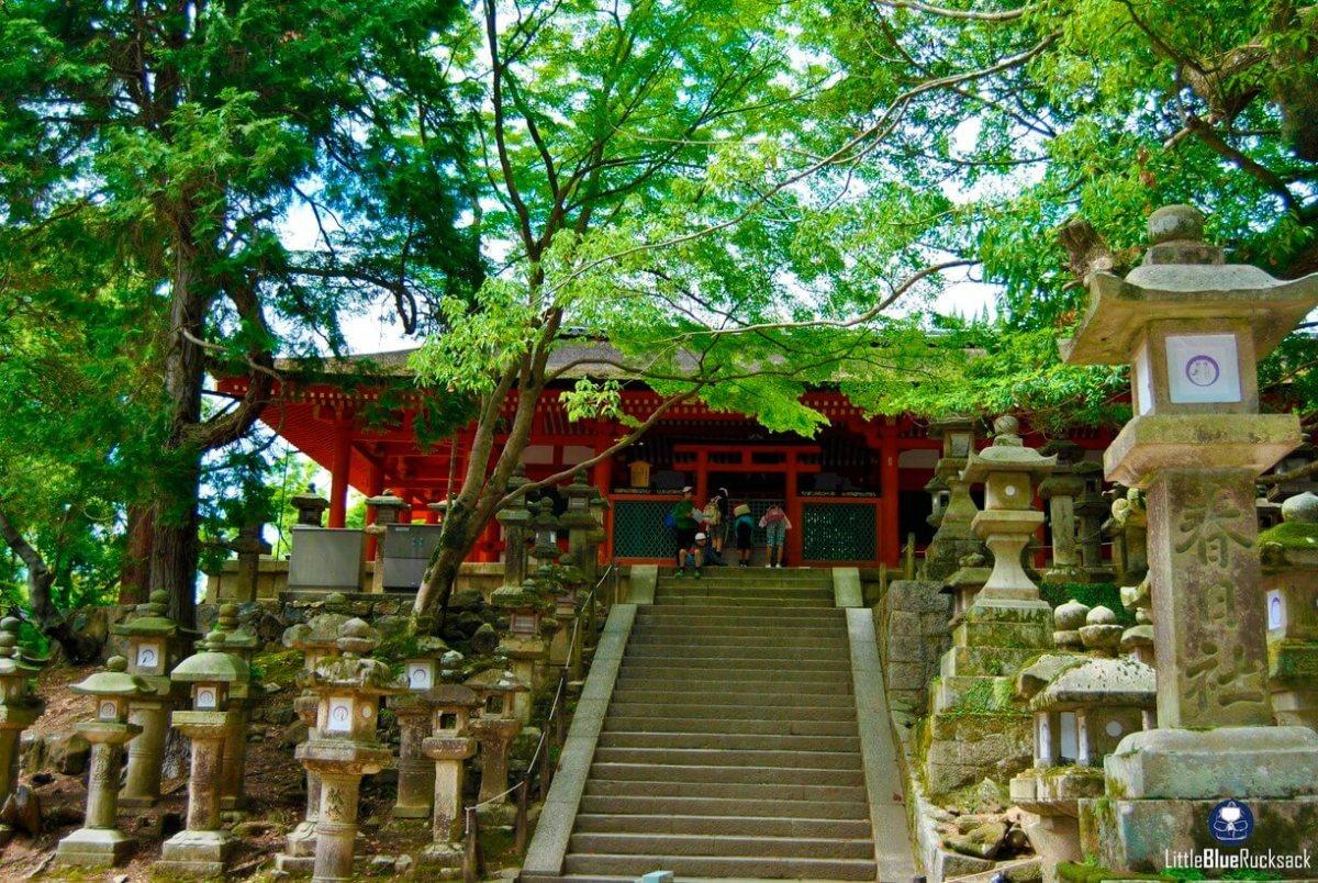 Pesona Dan Sejarah Dari Kuil Besar Kasuga Taisha Prefektur Nara