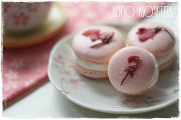 Membuat Macaron Sakura Yang Unik Dan Lezat