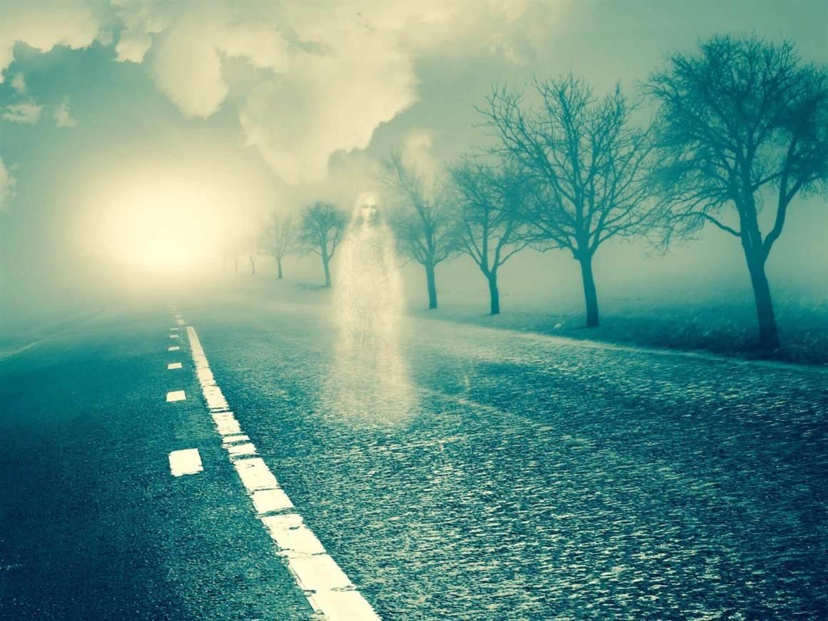 Sosok Putih Misterius Dari Kejauhan Yang Disebut Kunekune