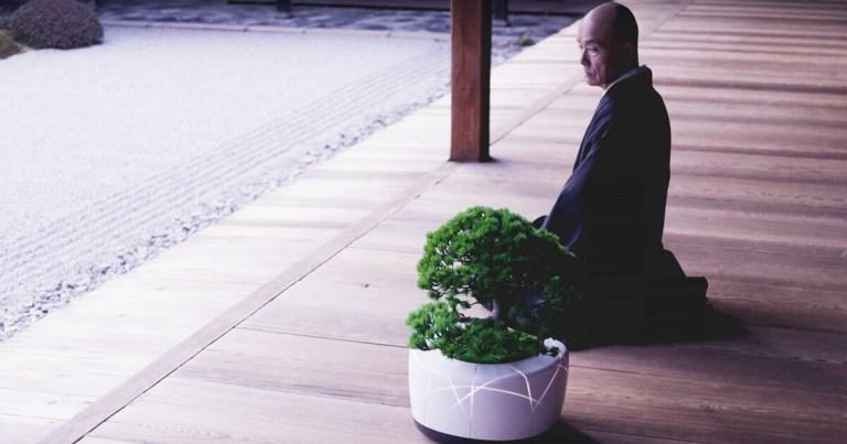 BonsAI Sebuah Teknologi Yang Membuat Pohon Bonsai Bisa Berbicara