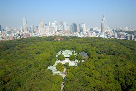 Kuil Meiji Jingu Ungkapan Rasa Cinta Penduduk Tokyo Kepada Kaisar Meiji 3