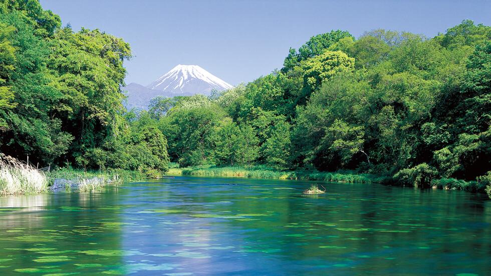 Gemar Berfoto Atau Selfie? Lihat Lokasi Terbaik Untuk Berfoto Di Jepang Berikut Ini