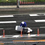 Pertarungan Antara Pengantar Domino Pizza Dengan Angin Topan Di Jepang 2