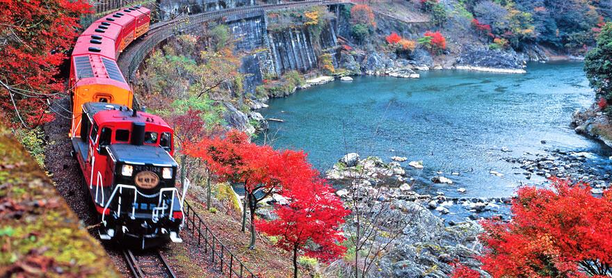 Menikmati Keindahan Alam Melalui Kereta ? Bisa Anda Rasakan Dalam Kereta Romantis Sagano !