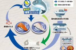 Hidangan Sushi Dengan Cokelat Jadi Tawaran Menarik Selama Hari Valentine Di Jepang !
