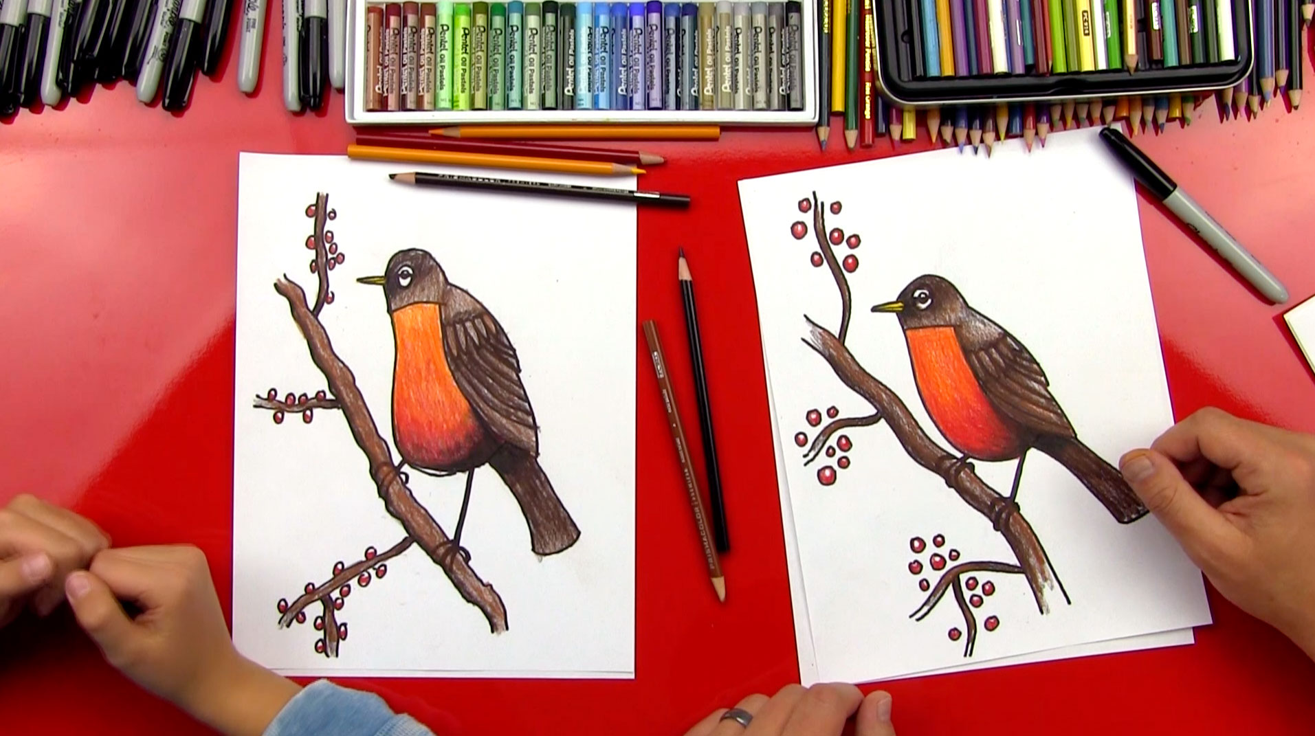 How To Draw A Robin Bird Realistic  Art For Kids Hub