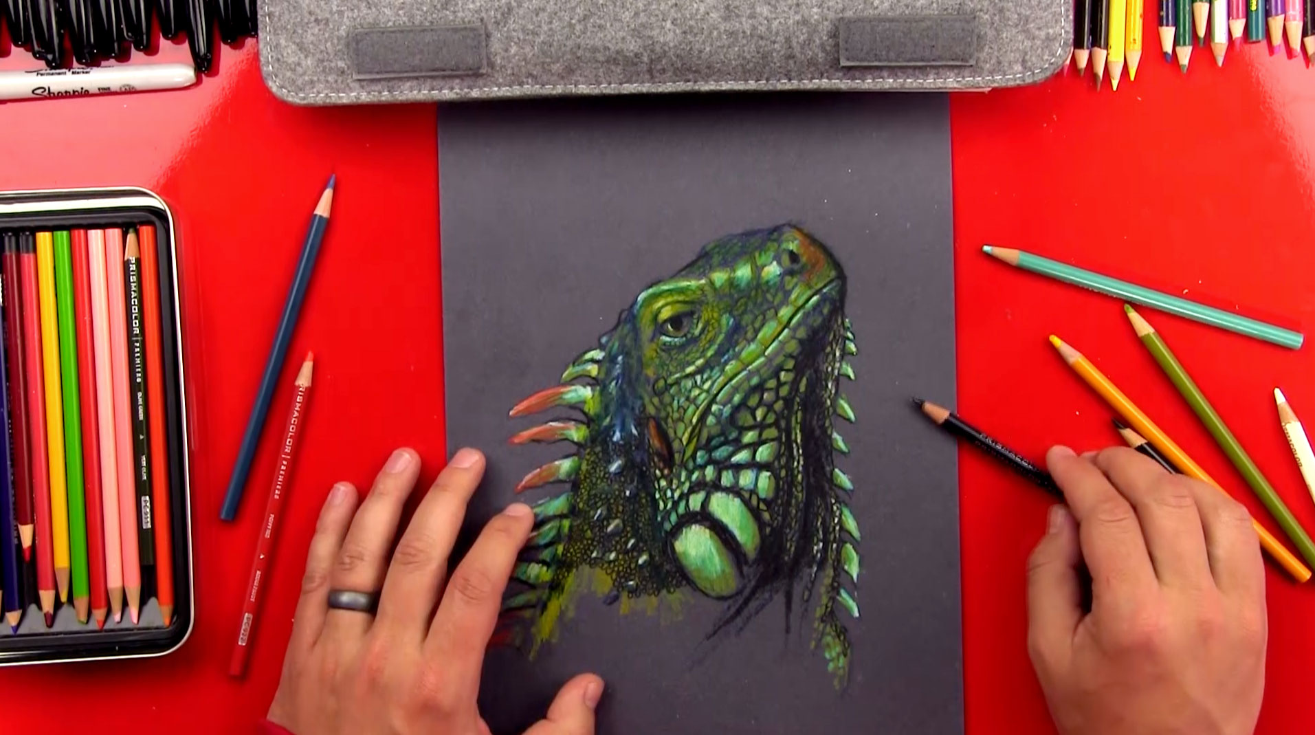 Iguana Drawing Colored Pencils On Black Paper Art For