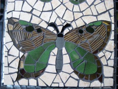 butterfly duo close up 2