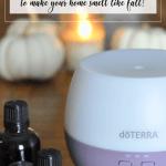 10 Best Fall Essential Oil Diffuser Blends Artful Homemaking