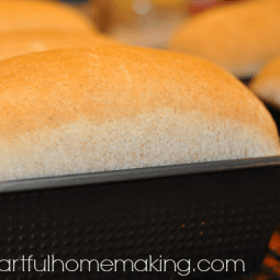 Make Your Own Bread {Day 7}