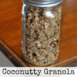 Coconutty Granola {Soaked}
