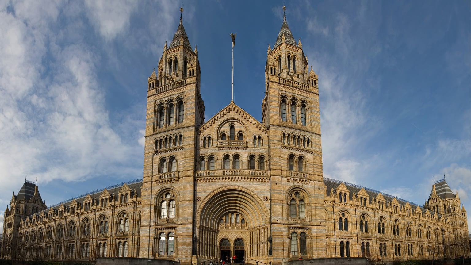 Natural History Museum London  Museums and galleries  Art Fund