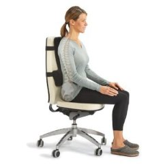 Posture Chair Demo High Back Dining Chairs Optp Thoracic Lumbar Support For Pain Relief Is A Dual That Promotes Proper To Help Relieve