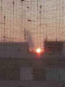 image of the sun rising seen through a net curtain