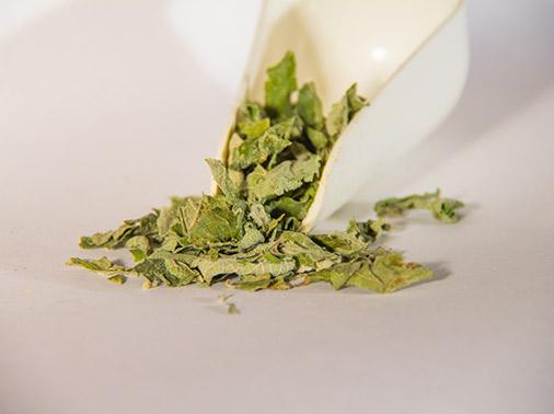 Herbstomp-dream-herb-scoop