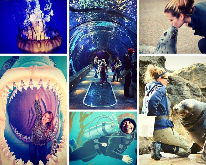 oregon photos aquarium
