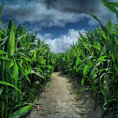 Monsanto Field