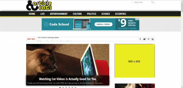 Advertise on Article Cats with a 300 x 250 pixel ad.