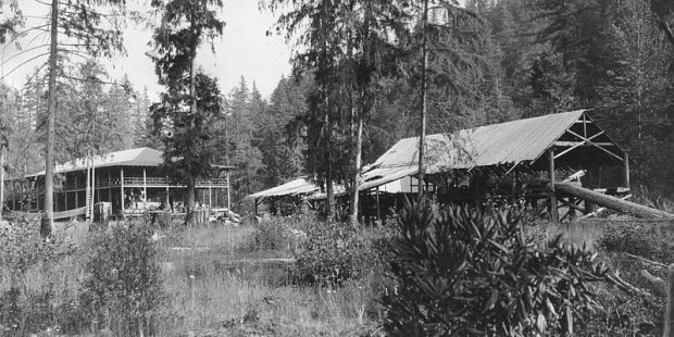 Wikimedia Commons/Oregon State University Archives