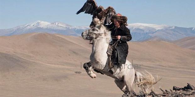 Mongolian hunter and his Golden Eagle, (http://hamidsardarphoto.com/).