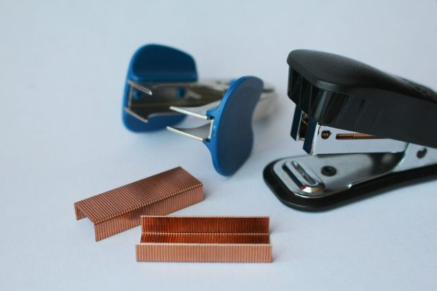 Crazy diets: ear stapling, stapler, staple remover, two rows of staples
