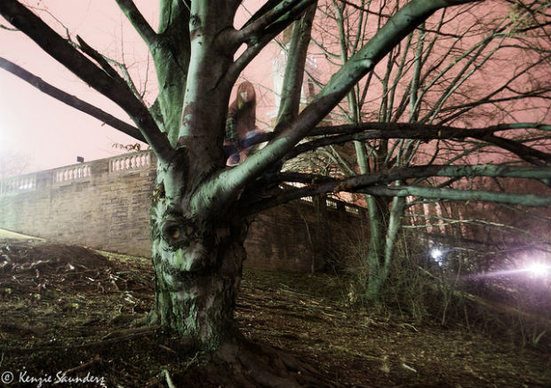 Photo: ghost in tree