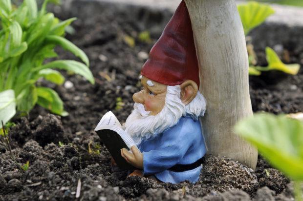 gnome liberation photopin