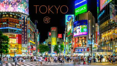 Photo of Top 5 Things to Do in Tokyo