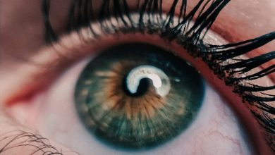 Photo of Things Should Know Before You Use Eyelash Extension