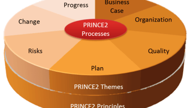 Photo of What is a PRINCE2 Project Manager?