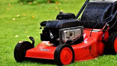 Photo of best robot lawn mower