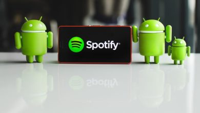 Photo of How to Download Music from Spotify Premium Android