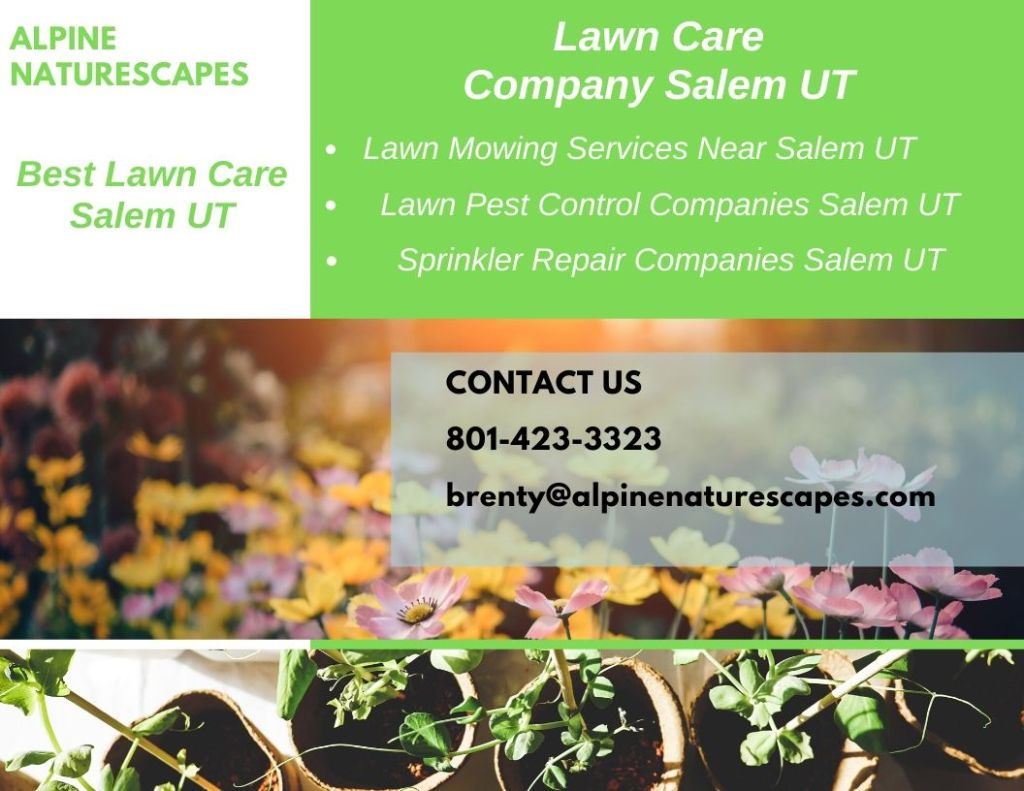Local Lawn Care Services Spanish Fork UT