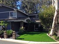 Artificial Lawn Home Garden, California Design Ideas