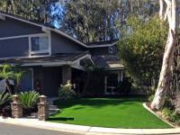 Artificial Lawn Home Garden, California Design Ideas