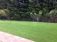 Backyard Ideas in Houston   Artificial Grass Houston, Texas