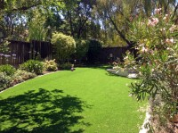 Faux Grass Danbury, Texas Backyard Playground, Beautiful ...