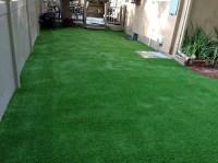 Synthetic Grass Goodrich, Texas Backyard Playground ...