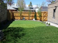 Synthetic Turf Magnolia, Texas Design Ideas, Small ...