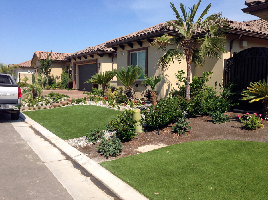 Grass Carpet Kaka, Arizona Landscape Design, Landscaping