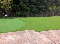 Fake Grass Carpet Miami Gardens, Florida Design Ideas