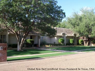 Synthetic Turf Ocala, Florida Home And Garden, Backyard