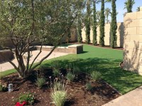 Fake Turf Gilbert, Arizona Landscaping, Backyard Design