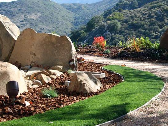artificial grass carpet harlem