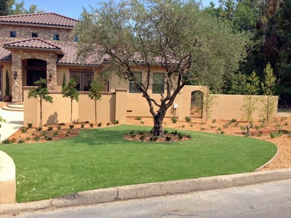 synthetic turf oak hill florida