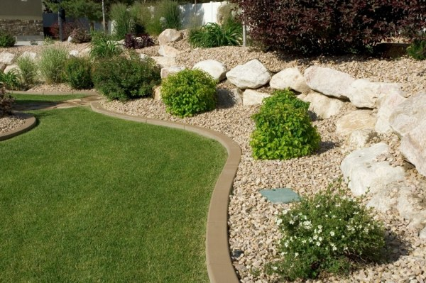 3 popular drought resistant landscaping