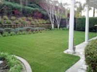 Artificial Grass Installation Robbins, California
