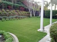 Artificial Grass Installation Robbins, California