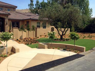 synthetic grass canyondam california